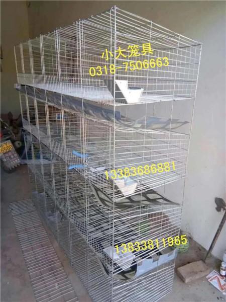 供应鸡鸽兔笼,狐狸笼,貉笼,鹌鹑笼,宠物笼及饮水器,食盒
